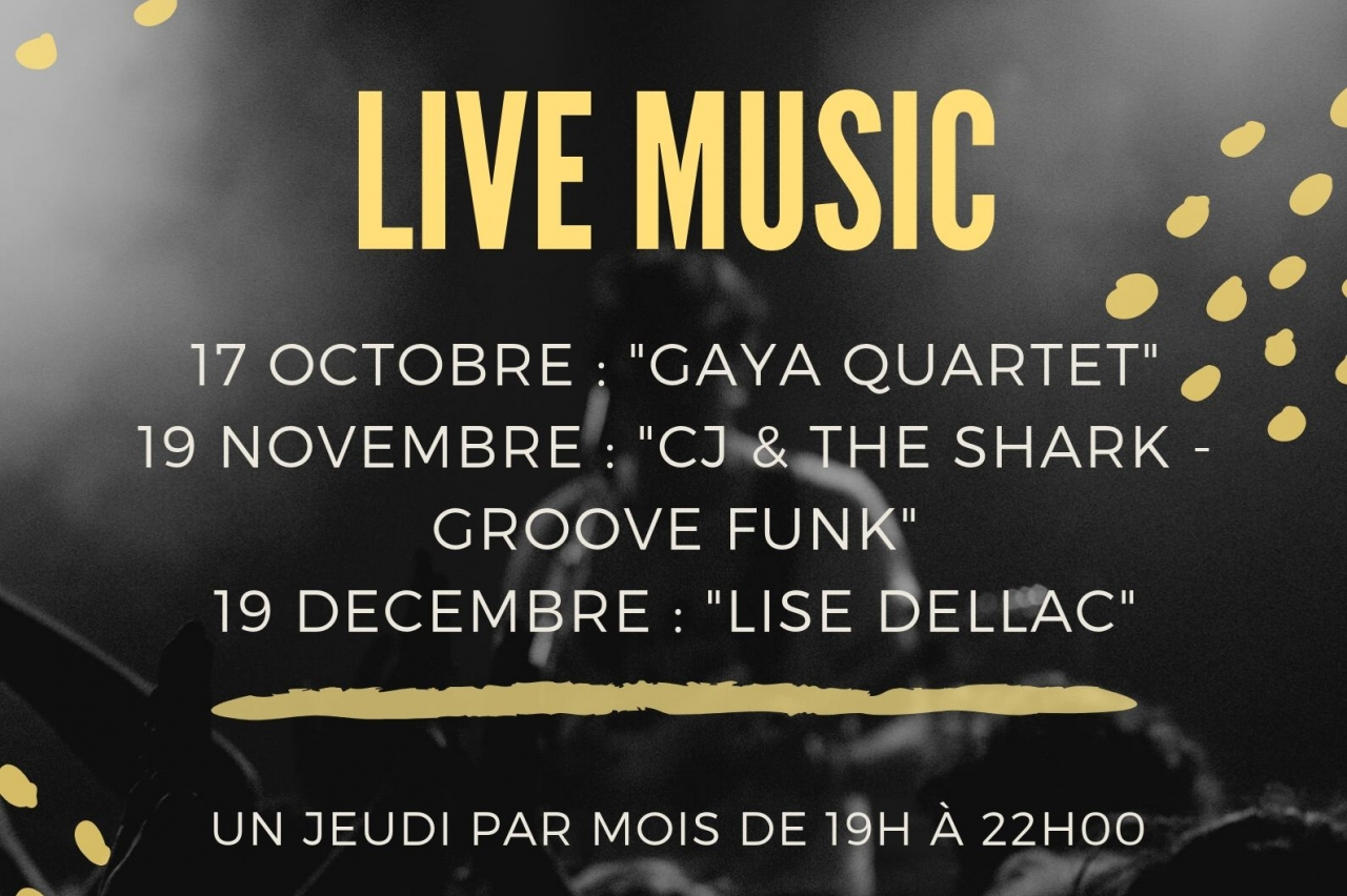 IBIS LIMOGES NORD - LIVE MUSIC